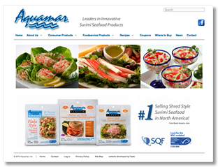 Aquamar Website Design